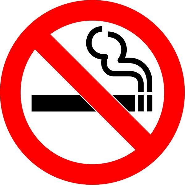 contoh teks anekdot pendidikan, merokok