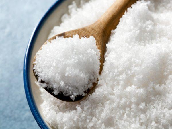 contoh opini publik terbaru - krisis garam